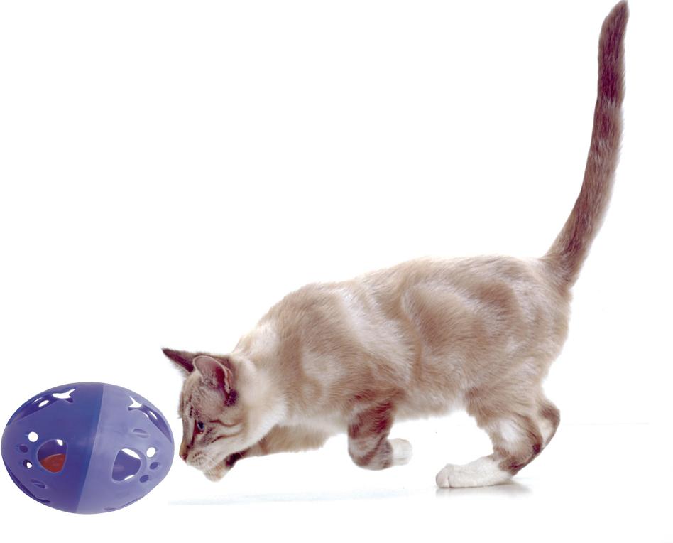 Juguete Pelota Sonora Gato Gigante 12cm