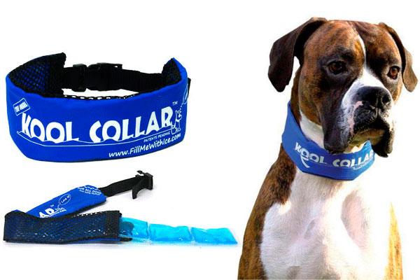 Kool Collar Collar Refrescante Para Perros