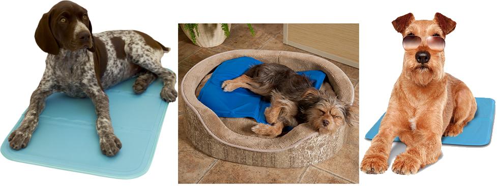 Colchón refrescante para perros