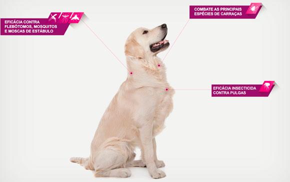 Frontline Tri-Act Pipetas Para Perros de 20kg a 40kg