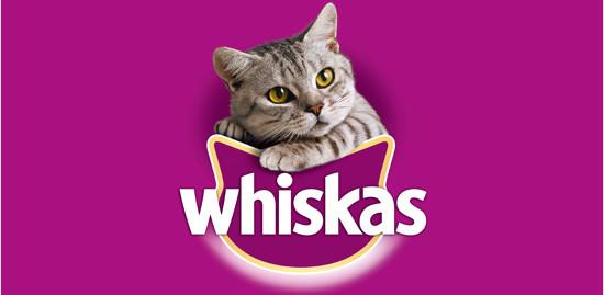 Whiskas 1+ Selección de Pescado Gelatina para Gatos