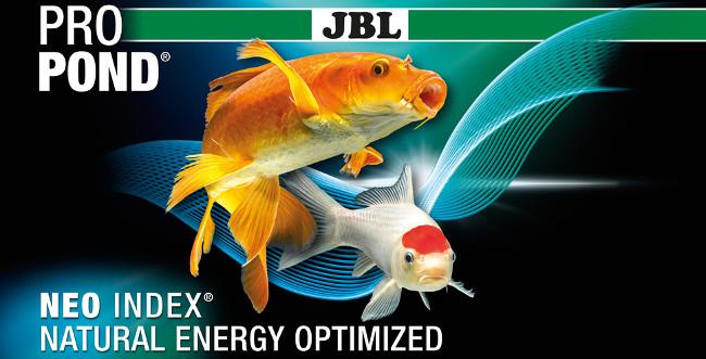 JBL 4 Estaciones Kois y Peces de Estanque M 5,8kg