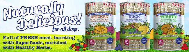 Lata Little Big Paw Pollo con Judías Verdes para Perros