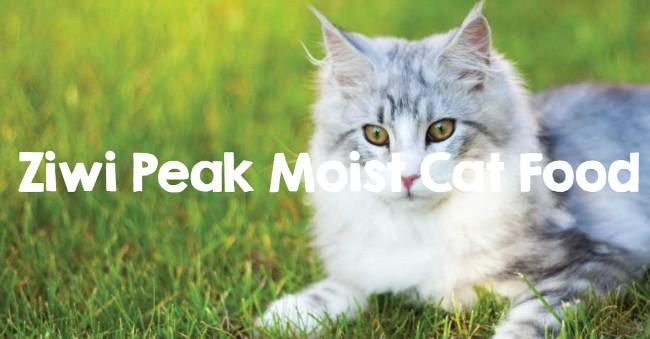 Ziwipeak Latas De Buey Para Gatos