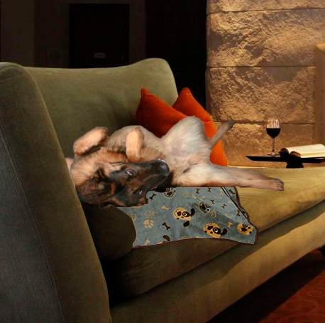 Manta Winter para Mascotas