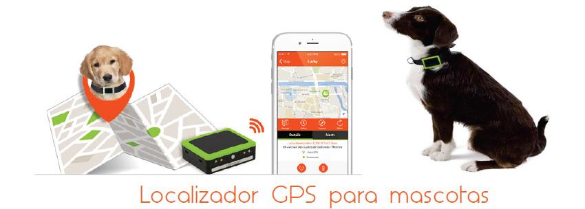 Collar GPS para perros Weenect
