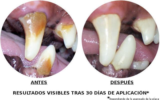 Fresh Breath Teeth Gel Limpiador Oral para Perros 118ml