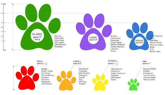 Botas Pawz Biodegradables e Impermeables Para Perros