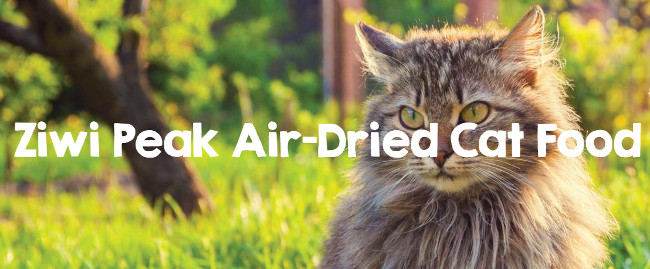 Ziwipeak Air Dried Cordero para Gatos 400grs