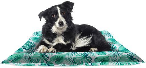 Colchón Refrescante Verde para Perro