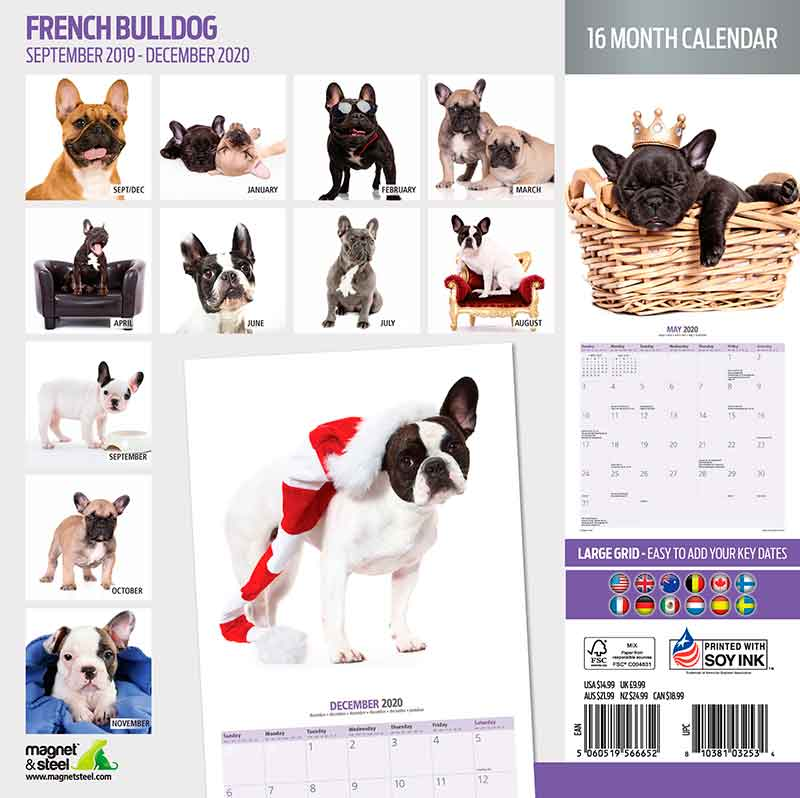 Calendario French Bulldog 2020