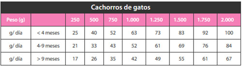 Nutribest Premiun Gatitos Pollo y Arroz