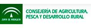 Junta-andalucia.jpg