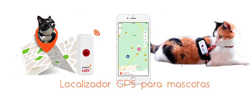 Collar GPS para Gatos Weenect