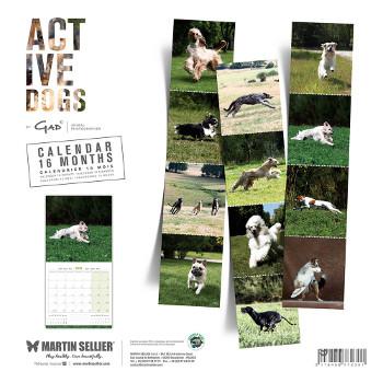 Calendario Active Dogs 2018