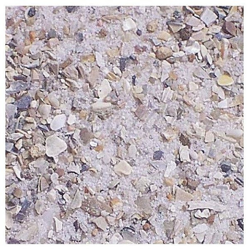 arena de conchas para ave.jpg