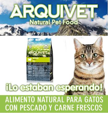 Pienso Arquivet Kitten natural para gatitos con pavo 1,5Kgs