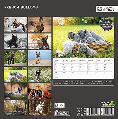 Calendario French Bulldog 2019