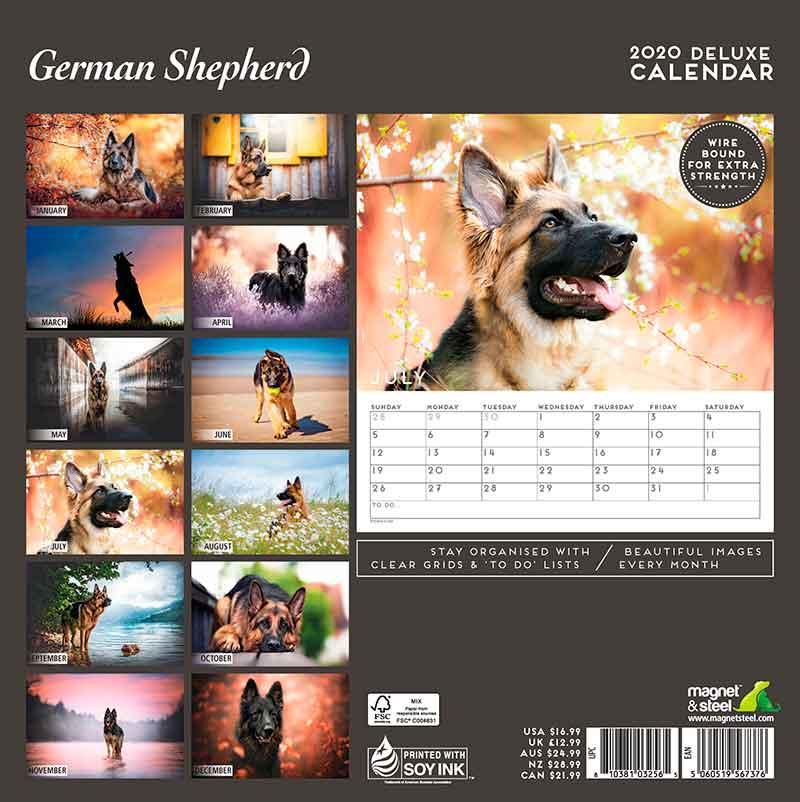 Calendario Deluxe Pastor Alemán 2020