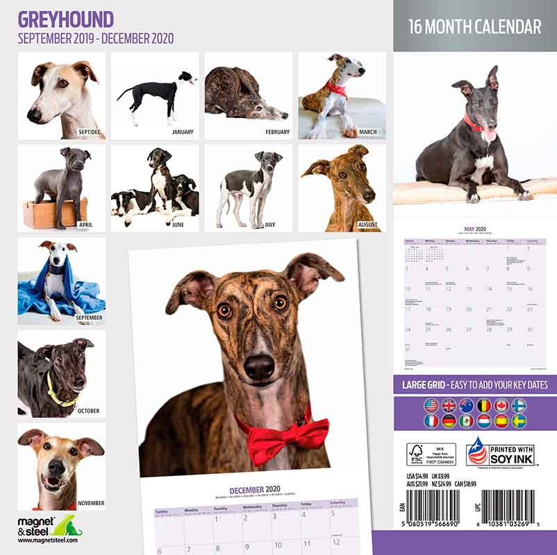 Calendario Greyhound (Galgo) 2020