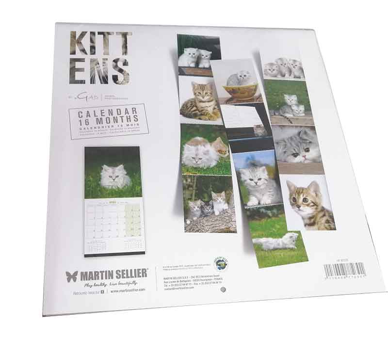 Calendario de Gatitos (Kitten) 2020