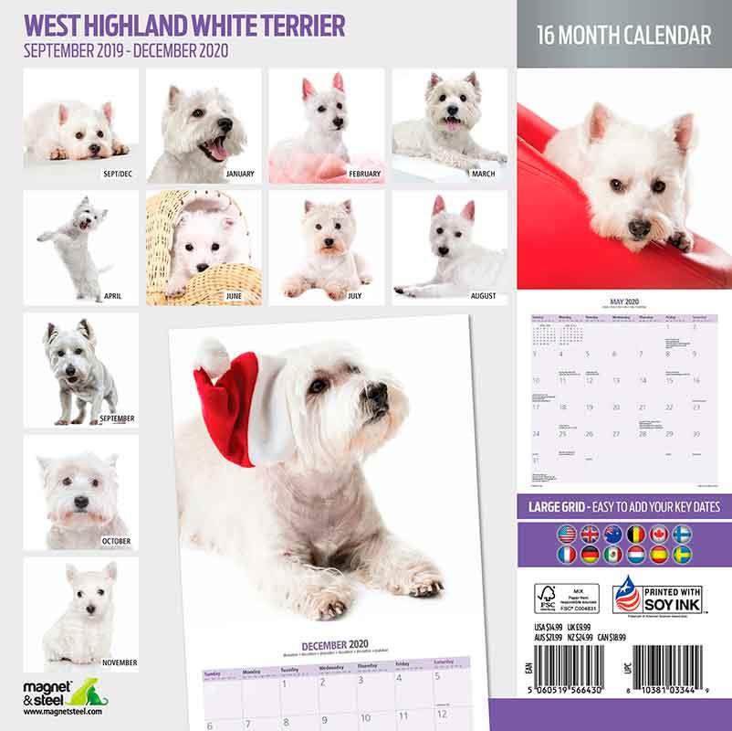 Calendario West Highland Terrier 2020