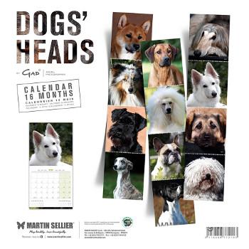 Calendario Caras de Perros distintas razas 2018