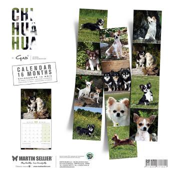 Calendario Chihuahua 2018