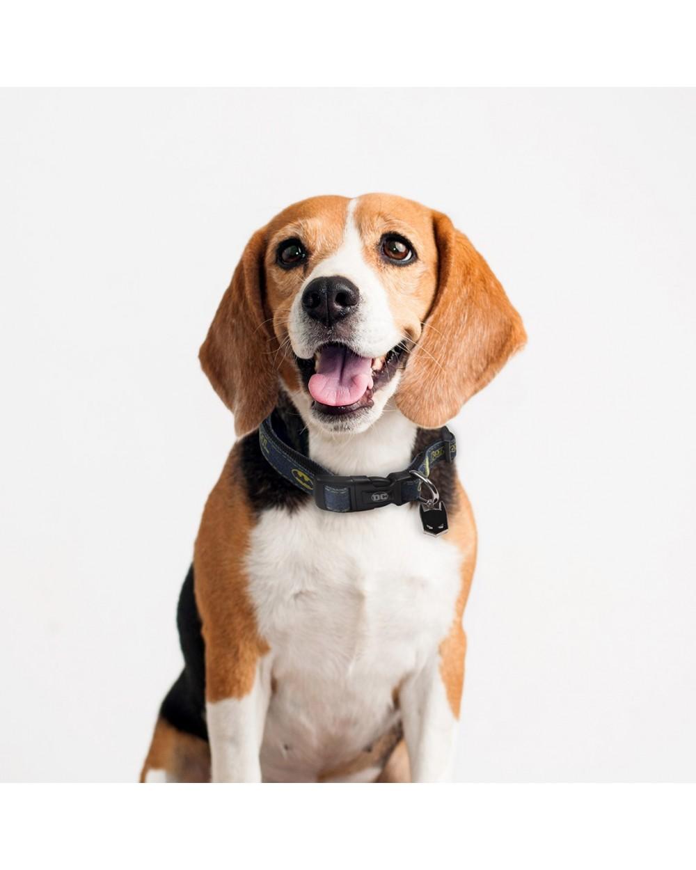collar-para-perros-xs-bt-daily-use-20194