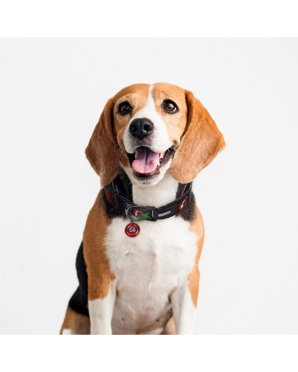 collar-para-perros-xs-mv-daily-use-20194
