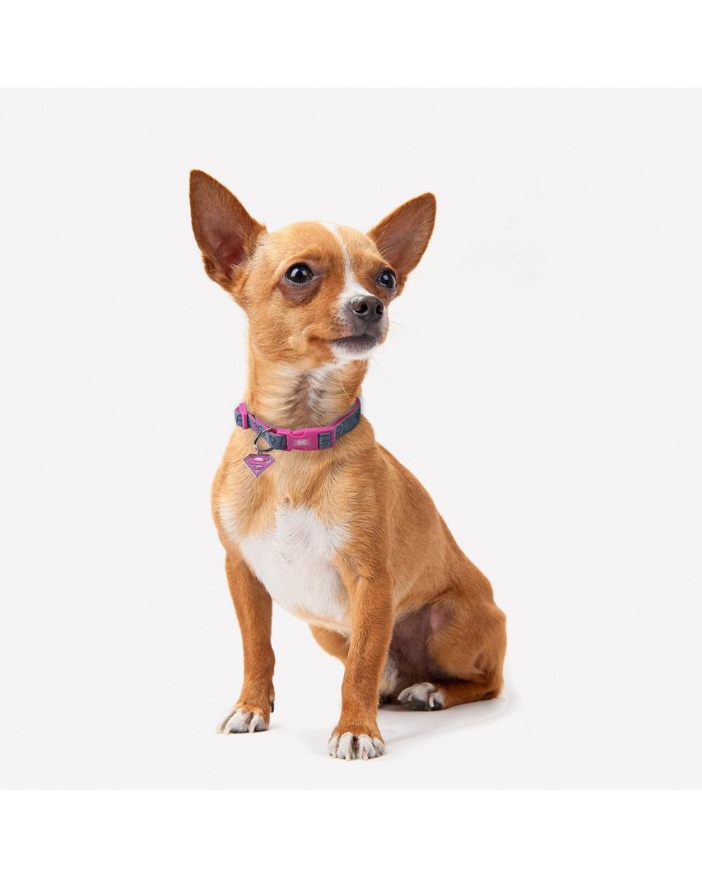 Collar SuperGirl Oficial para Perro