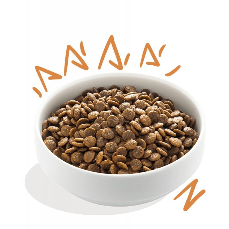 edgard-cooper-adult-grain-free-pollo-par