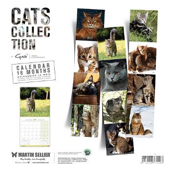 Calendario de Gatos 2019