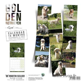 Calendario Golden Retriever 2018