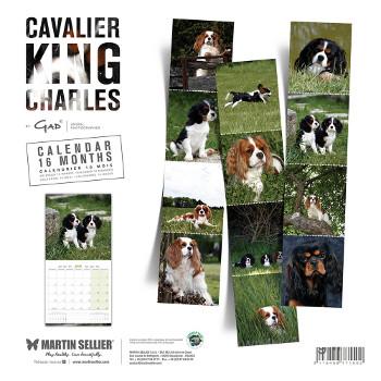 Calendario Cavalier King Charles 2018