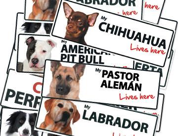 modelos-placas-perros.jpg