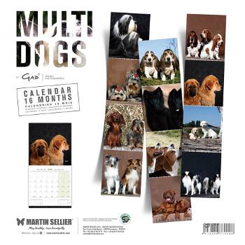 Calendario Multi Dogs 2018