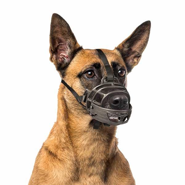 Bozal Duvo Abatible Para Perros
