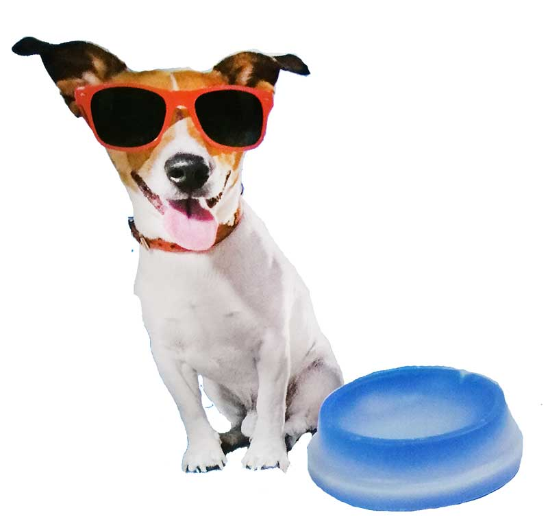 Bowl Bubimex Refrescante Agua Más Fria para Perros y Gatos
