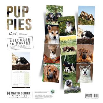 Calendario de Cachorros 2019
