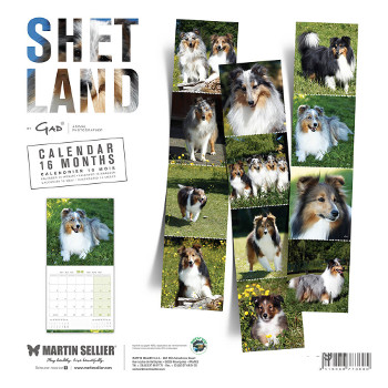 Calendario Pastor Shetland 2018