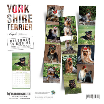 Calendario Yorkshire 2019